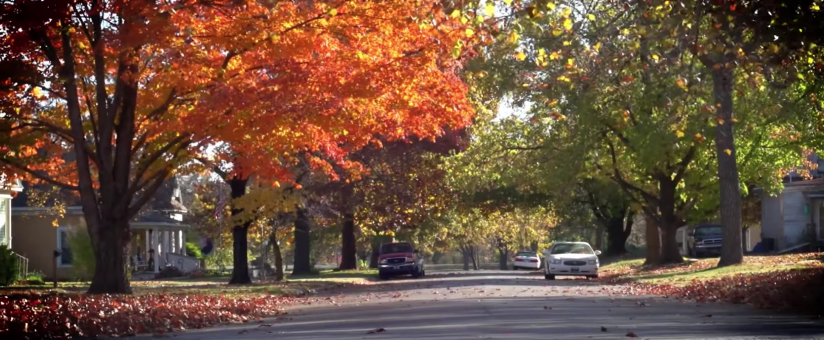 Neodesha City street with fall trees